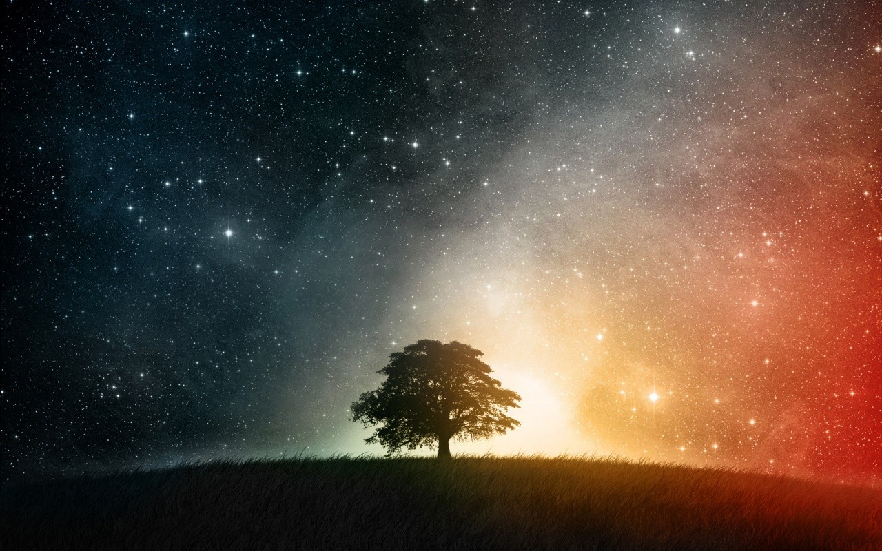 night-sky-tree-universe-429581